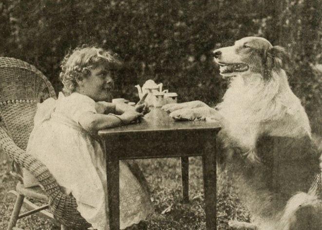 A Dog's Love (1914)